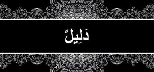 Abdulhay Laknaviy barlaviylarga qarshi