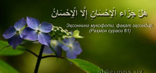 luxfon.com_104