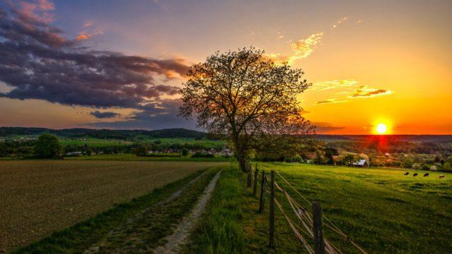 Nature_Landscape-wallpaper-11212127-640x360