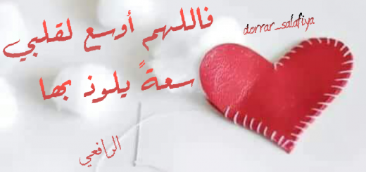 tumblr_ouqmygWHlu1uq20lao1_1280